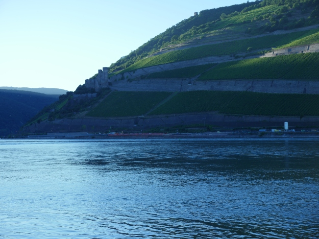 Lower Rhine Valley near by Bingen
