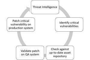 Critical Vulnerabilities Mitigation Process